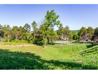 12145 Monument Drive Knoxville, TN MLS# 1116404