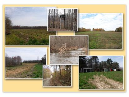 627.50ac Barnes Rd Whitleyville, TN MLS# 1120563