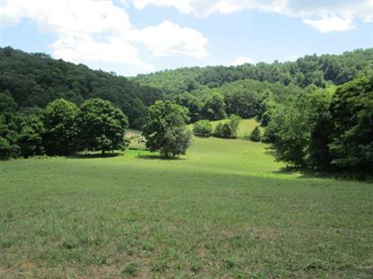 Cracker Neck  Washburn, TN MLS# 1122432