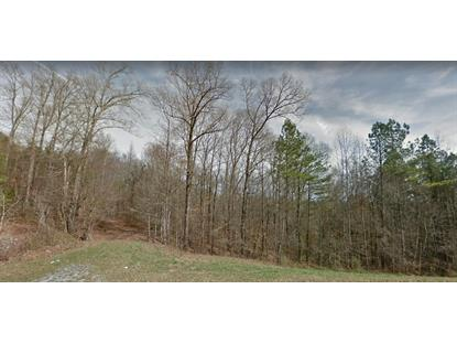 Old Clearwater Rd Niota, TN MLS# 1122760