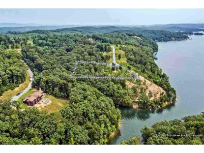 000 River Run Trail  Spring City, TN MLS# 1124528