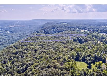 Lots 3&4 Possum Trot Rd Grandview, TN MLS# 1124633