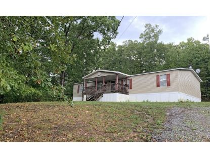 715 Old Johnston Valley Rd Kingston, TN MLS# 1125733