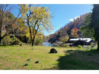 Rafter Rd Tellico Plains, TN MLS# 1126608
