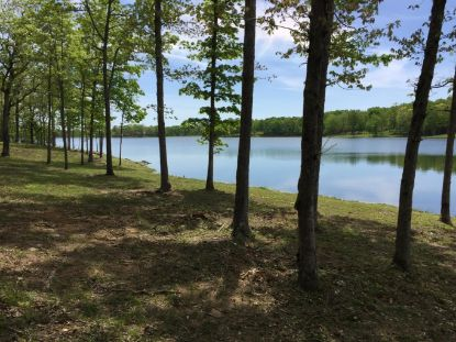 0 Hemlock Lane Spencer, TN MLS# 1127971