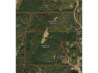 County Road 43  Calhoun, TN MLS# 1128281