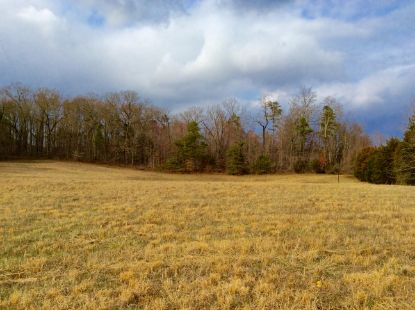 Lot 1 Star Gazing Lane Knoxville, TN MLS# 1129616