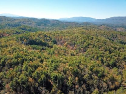 Ivy Tr Tellico Plains, TN MLS# 1135085