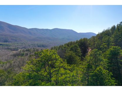 Lot 4 Smithfield Rd  Tellico Plains, TN MLS# 1138828