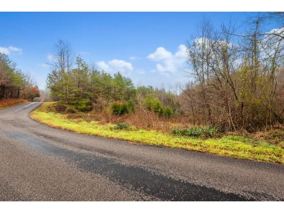 Baker Rd Tellico Plains, TN MLS# 1139940