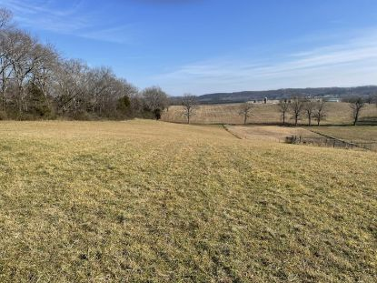 highway 309  Niota, TN MLS# 1140042