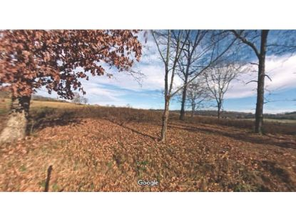 216 Co Rd 260  Niota, TN MLS# 1140202
