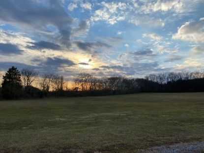44.45 Ac Highway 11  Niota, TN MLS# 1140496