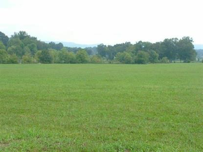 Lot #2 Gillespie Bend Rd, Dayton, TN