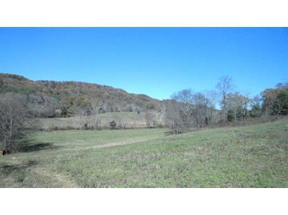 Nails Creek Rd Seymour, TN MLS# 946309