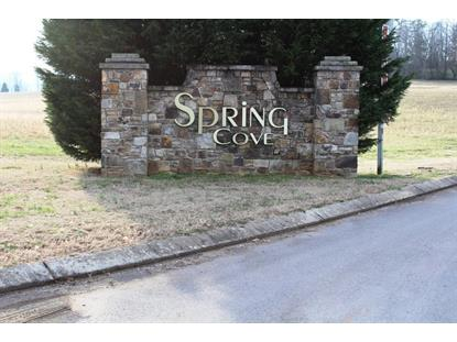 Spring Cove Lane Spring City, TN MLS# 952779