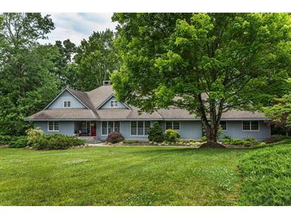 1919 Chestnut Grove Rd Knoxville, TN MLS# 968080