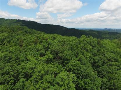 0 Wiley Oakley Drive Gatlinburg, TN MLS# 970398