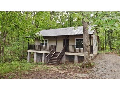 720 Scenic Lakeview Drive Spring City, TN MLS# 974636