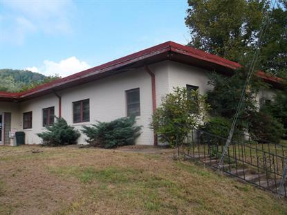 901 S Main St Lake City, TN MLS# 976727