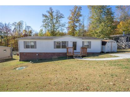 163 Cutters Lane Clinton, TN MLS# 982736