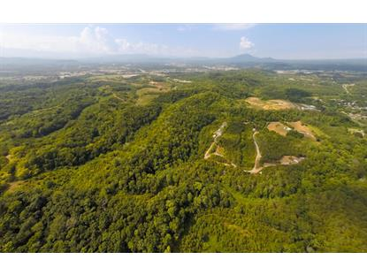 668 Cold Springs Rd Sevierville, TN MLS# 986601