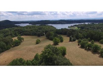 802 Lakeland Farms Rd Lenoir City, TN MLS# 988213