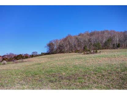 E Wolfe Valley Rd, Heiskell, TN