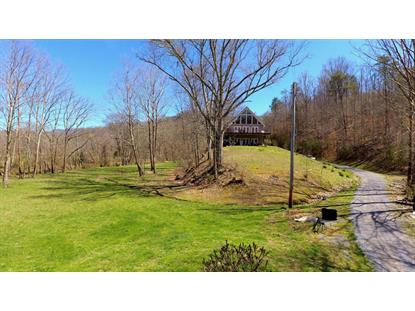 1447 Ellejoy Rd, Seymour, TN