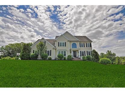 19 Canterberry Ln , Norfolk, MA