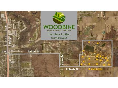 Lot 3 Woodbine Park Prairie Estates Mount Zion, IL MLS# 6184408