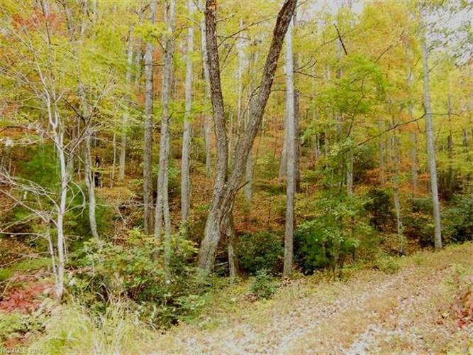 8 & 9 Rock Cave Road, Black Mountain, NC 28711