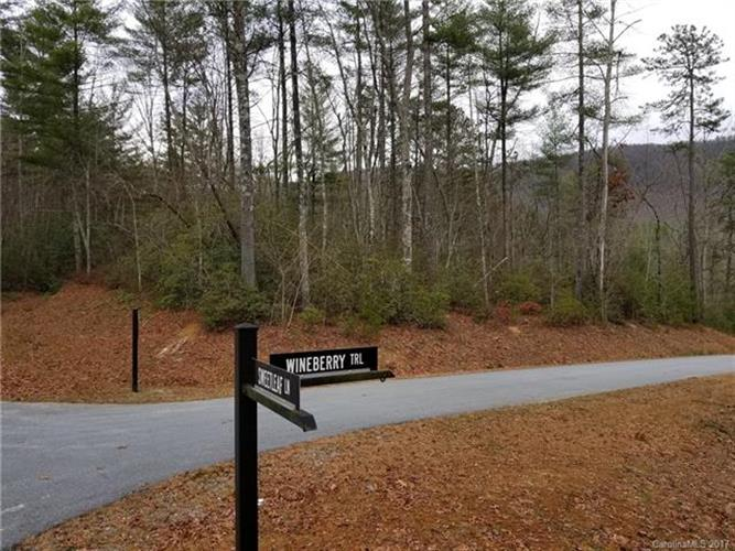 Lot-52 Wineberry Trail, Brevard, NC 28712