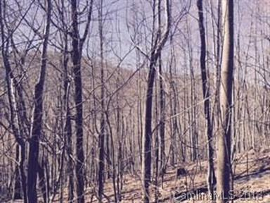 Lot 87 Blue Mist Way, Arden, NC 28704