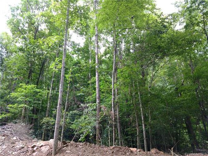 Lot #47 Green River Cove Road, Saluda, NC 28773