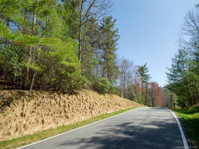 144 Chattooga Run, Hendersonville, NC 28739 - Image 1