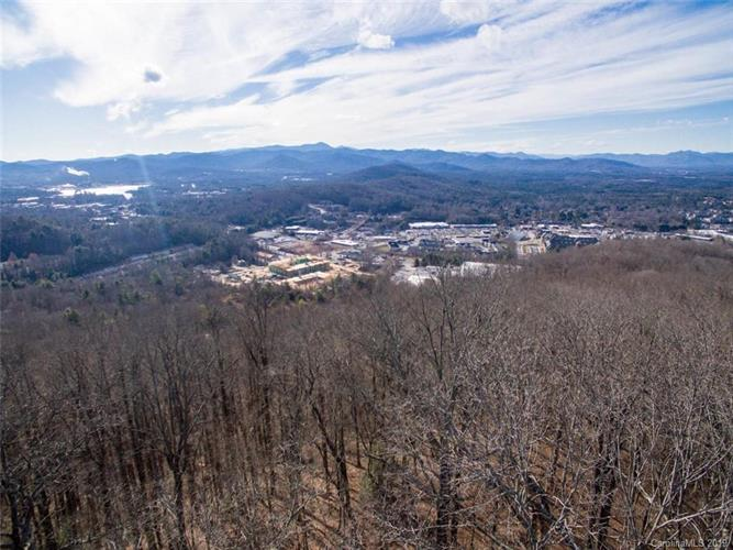 00000 Old Forest Drive, Asheville, NC 28803 - Image 1
