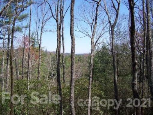 Lot 10 Deep Ford Falls Drive, Lake Toxaway, NC 28747 - Image 1