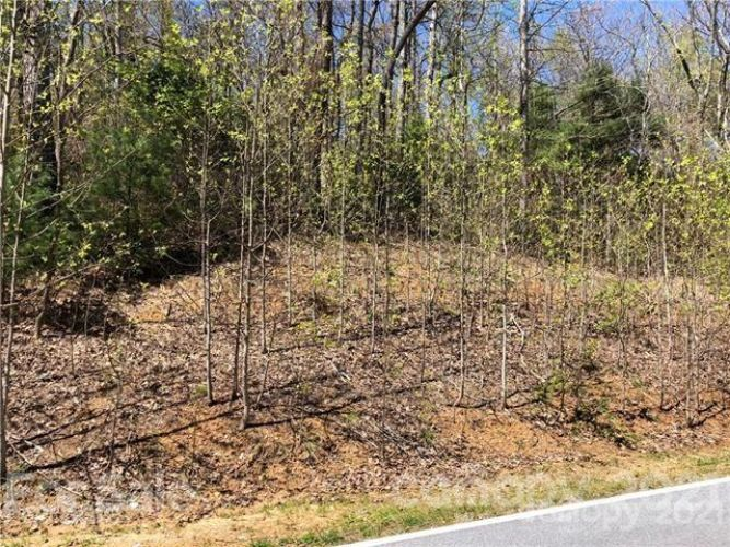 128 Pinnacle Peak Lane, Flat Rock, NC 28731 - Image 1