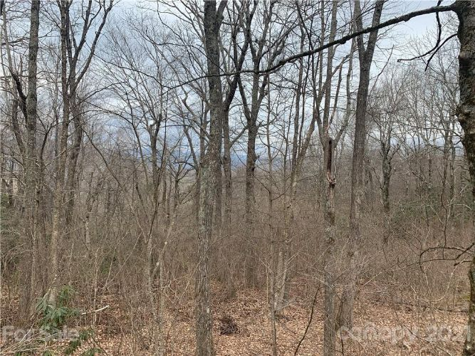 Lot 29 Summit Ridge Road, Lake Toxaway, NC 28747 - Image 2