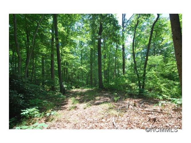 29/30 Open Ridge Trail, Pisgah Forest, NC 28768