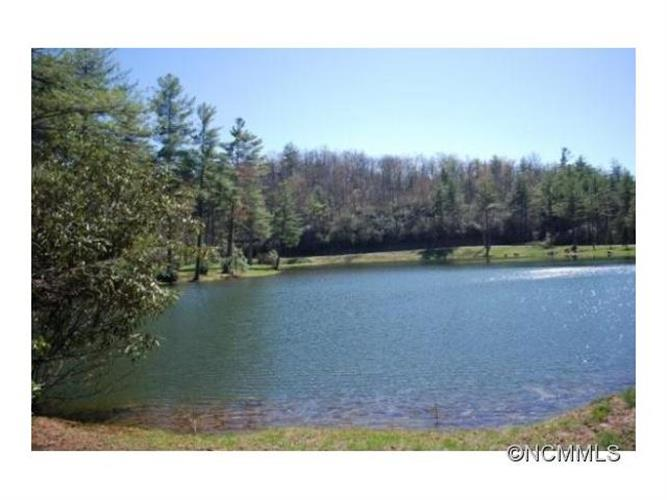 lot 9 Marshall Lake Road, Cedar Mountain, NC 28718