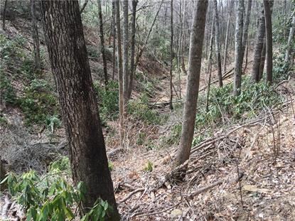 10 acres Old Wagon Trail Fairview, NC MLS# 3212550