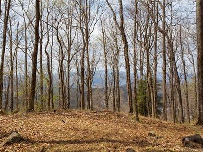 99999 Old Forest Drive Asheville, NC MLS# 3232427