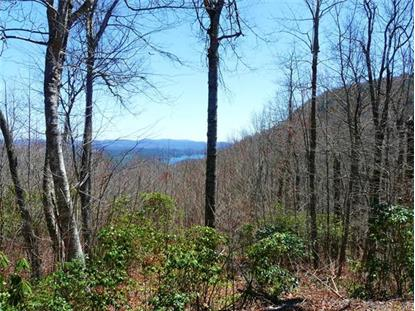 4812 Cold Mountain Road, Lake Toxaway, NC