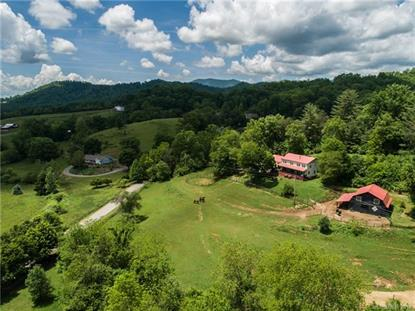 48 Silent Forest Drive Canton, NC MLS# 3394010