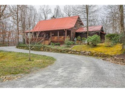 421 Fox Tower Road Brevard, NC MLS# 3491629