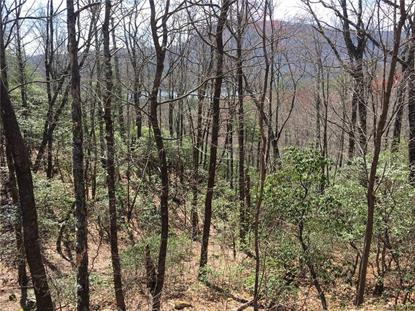 0 Hawk Mountain Road Lake Toxaway, NC MLS# 3497120