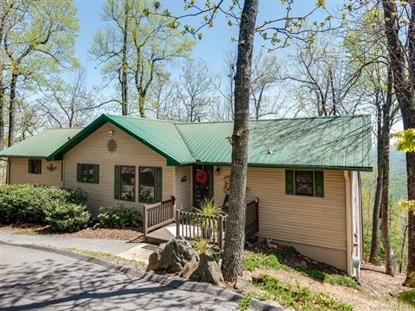 3041 Skyuka Mountain Road Columbus, NC MLS# 3499406