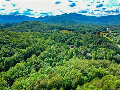 TBD Raleigh Drive Lake Lure, NC MLS# 3504293